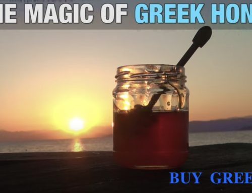 The Magic of Greek Honey – Buy Greek